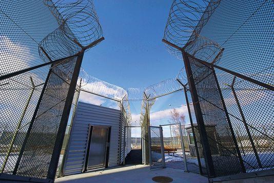 prison Suede